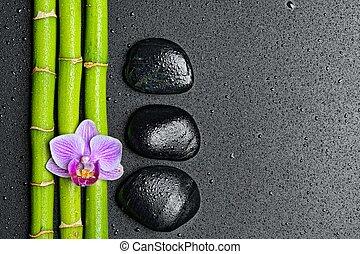 zen stones - zen basalt stones and orchid.