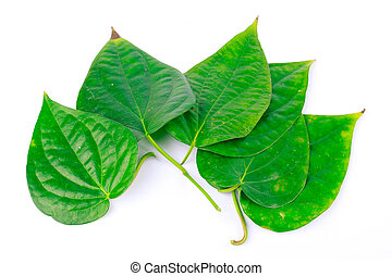Betel leaves are medicinal plants