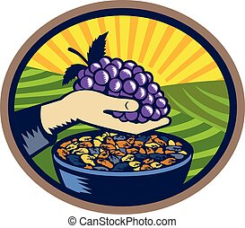 Hand Holding Grapes Raisins Oval Woodcut - Illustration of a...
