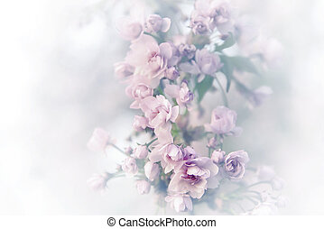 Spring sakura blossoms. Vintage abstract background image.