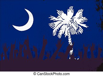 South Carolina State Flag with Audience