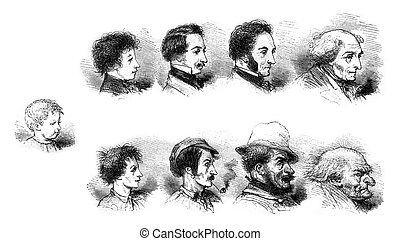 Influence of the morality or immorality of the physiognomy,...