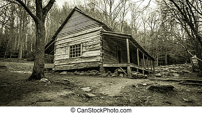 Smoky Mountain Cabin. The Ogle Historical Cabin on the...
