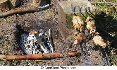 Kebabs with chicken Are Cooked On The Fire Shashlik, which...