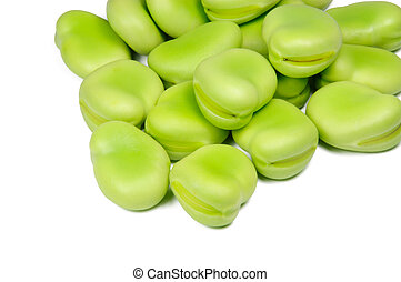 broad bean - Picture of isolated broad bean with white...