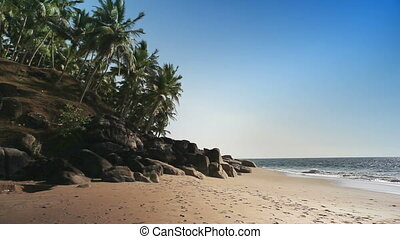 The seashore with stones and palm trees India