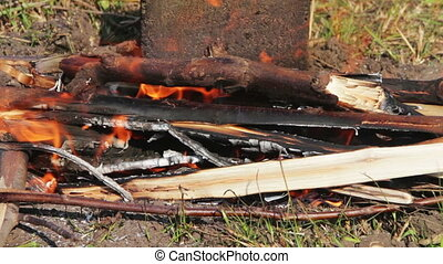 Fire is Burning in Nature - Burning fire of firewood...