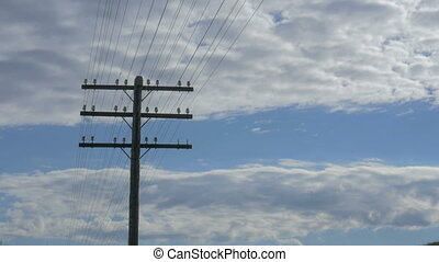 Electric pole against the blue of the evening sky, white...