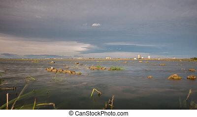 Beautiful rice fields with water in Albufera, Valencia. -...