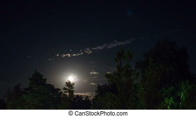 Night moon rises on the horizon and trees on the background of the night stars and clouds.