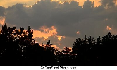 Time lapse of clouds at sunset in sky over tree silhouettes...