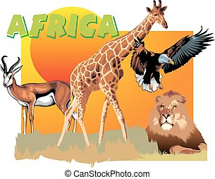 africa animals as ZOO banner isolated on the white...