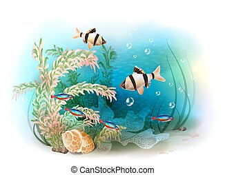 Illustration of the tropical underwater world. Aquarium...