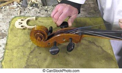 a luthier repairs a cello - Luthier puts tension the stings...