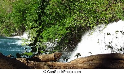 Waterfall cascade in deep forest