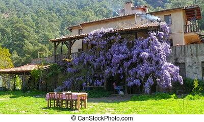 """""""lovely village house, walls full of flover"""""""