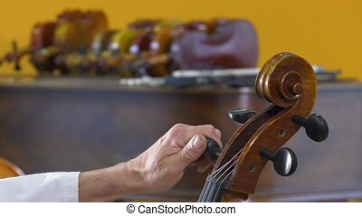 a luthier repairs a cello - The luthier tune the four...