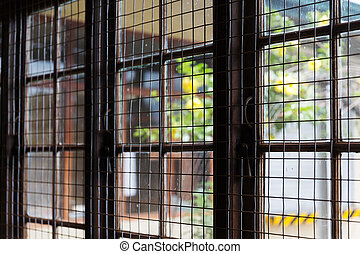 close up of window with metal grate - security, safety...