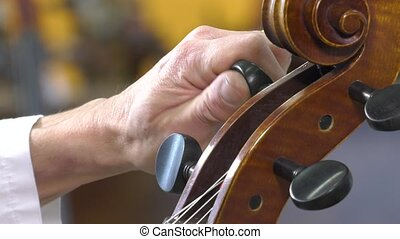 The luthier tune the cello - key rotation adjusts the sound...