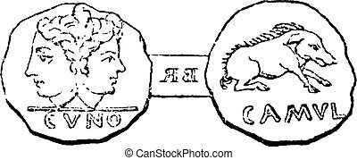 Coin struck under the son of Cunobelinus at Camulodunum (Colchester), vintage engraving.