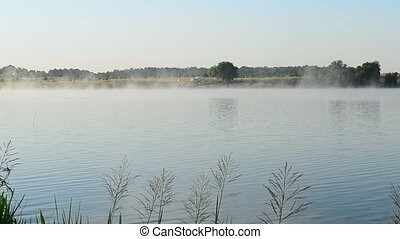 Beautiful fog floats in morning above water surface of a lake