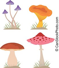 Mushrooms vector illustration set different types isolated...