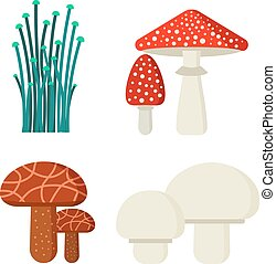 Mushrooms illustration set different types isolated on white...