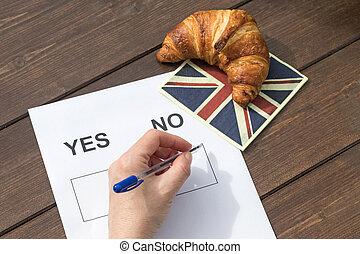 選擇,  referendum, 不