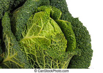 Savoy Cabbage closeup isolated on white background
