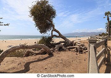 Santa Monica coastline - Along the Santa Monica coastline...