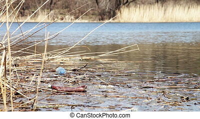 Garbage, Plastic Bottles in the River - Garbage, plastic...