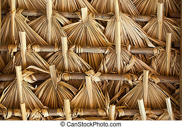 Thatch in Latin America - Primitive thatch of palm leaves in...