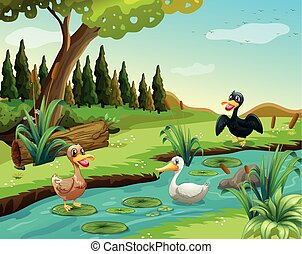 Scene with three ducks by the pond illustration