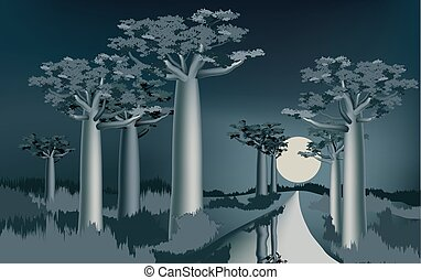 Night in the African baobab forest near the river 2