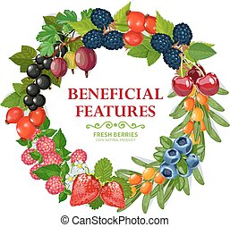 Fresh Natural Berries Wreath Decorative Frame - Fresh wild...