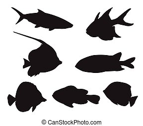 Fish Set Silhouettes on the white background