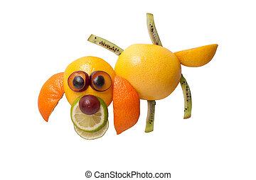 perro, en, divertido, postura, hecho, de, frutas, en,...