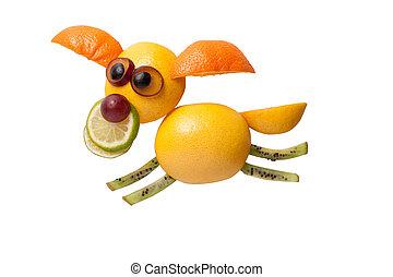 divertido, vuelo, perro, hecho, de, frutas, en, aislado,...