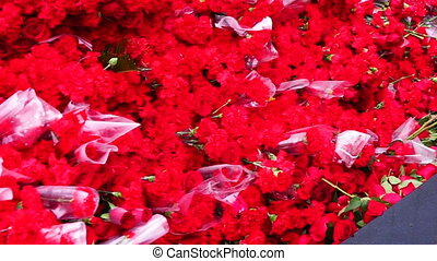 flowers.red roses and carnations hd