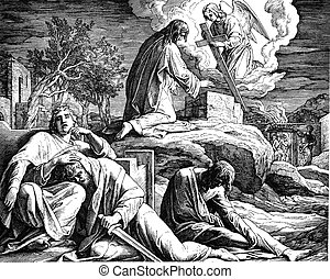 Jesus in Gethsemane - These engravings were written and...