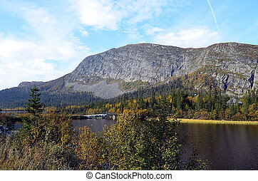 Sunny day in south Norway at a lake - Sunny day in south of...