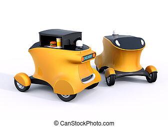 Two autonomous hamburger robot cars - Two autonomous...