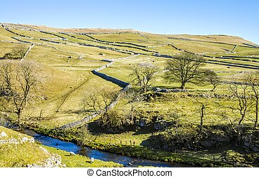 Malham Beck surrounded by fields - Malham Beck, North...