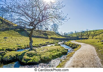 Malham Beck with footpath beside it. - Malham Beck with...