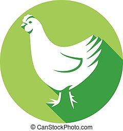 chicken flat icon