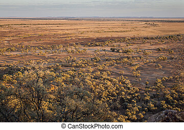 Australian outback in drought