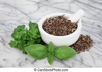 Basil Herb Varieties - Fresh basil herb types with dried...