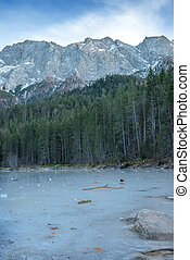 Frozen forest lake in Bavarian Alps near Eibsee lake, winter.