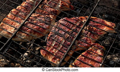 steak of turkey breast on the grill, close-up shot