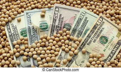 Agricultural concept soy and money - Heap of soy beans and...